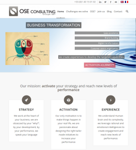 Ose Consulting website